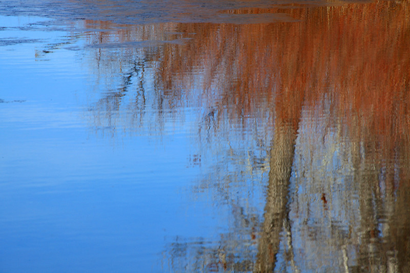 (DT-10008) Reflection at Home Lake near Monte Vista, Colorado