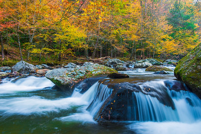 Smokey Mountain Stream with Warm Colors
