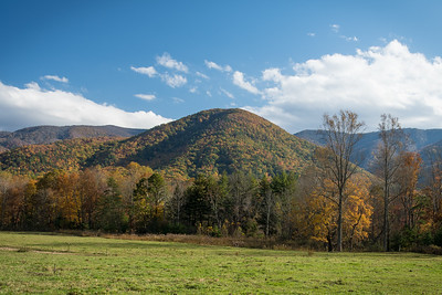 Cades Cove Foothill