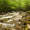 Greenbriar River - GSMNP