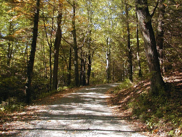 The road walk up to Purchase Gap was one of the prettiest places. It was fairly steep in spots, but not too long.
