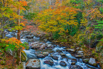 Stream with Many Colors