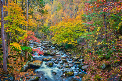 Smoky Mountain Fall Stream