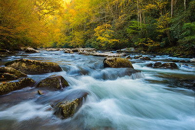 Colorful Smoky Mountains Stream and Trees in Autumn