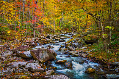 Colorful Smokies Stream