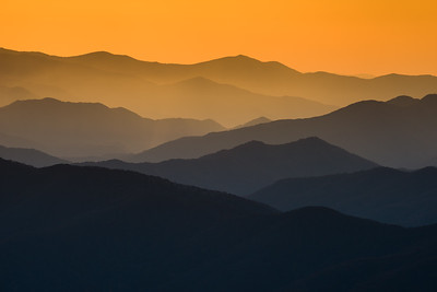 Smokies with Orange Hues