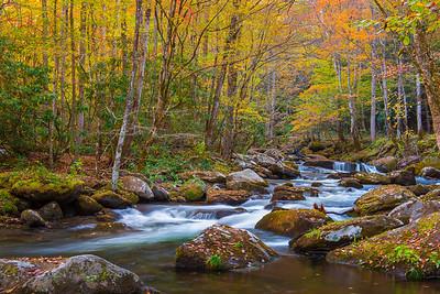 Gentle Stream in Autumn
