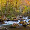 Soft Stream in Autumn