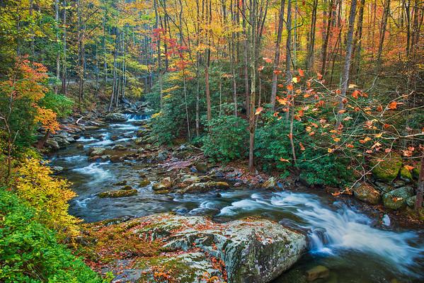 Mountain Stream in the Smoky Mountains