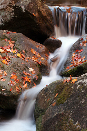 A small set of rapids during the fall of 2008.