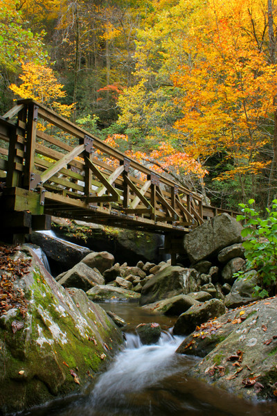 A bridge crosses over a stream near High Shoals Falls.