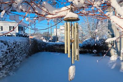 Snow 02082021b 853