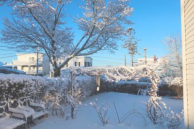 Snow 02082021b 842