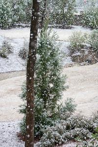 Snow Day 2009-6127
