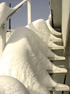 Snow 2009 03 (58)