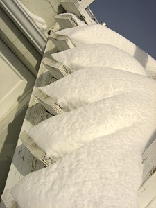 Snow 2009 03 (59)