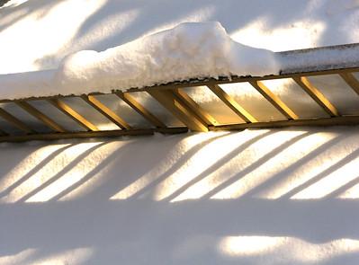 Snow 2009 04 (18)