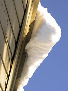 Snow 2009 04 (19)