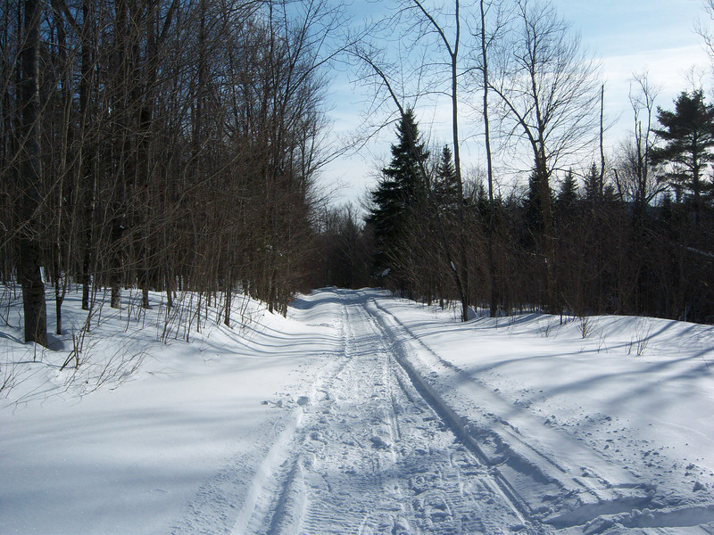 Snowmobiles are so much better than snowshoes.
