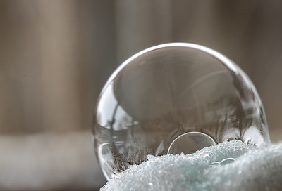 Bubbles 2-17-2021-1163