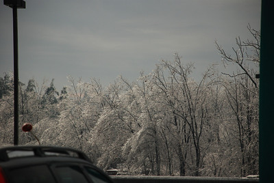 Ice can make the landscape look beautiful, but unfortunately it's very destructive.