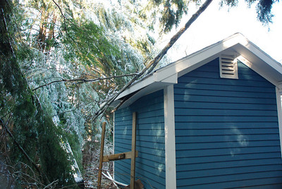 Fortunately we only had minor damage to our shed. Others around us were not so lucky.