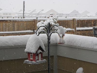 2009-1030 (Snow in Brighton)