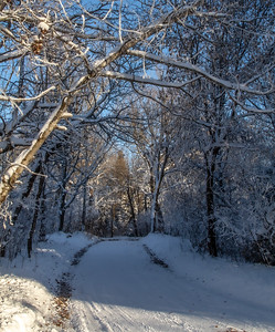snow vb 12 20-5