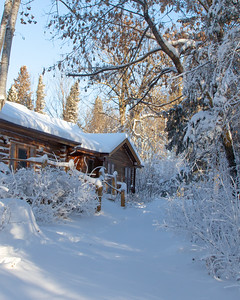 snow vb 12 20-4
