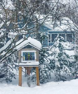 vb snow 12 20 (10)