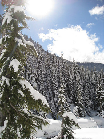 Snow shoe Feb 2011