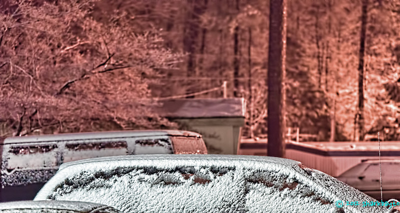 I love watching snow fall. Everything looks so pure and peaceful. (19 Feb 2012)