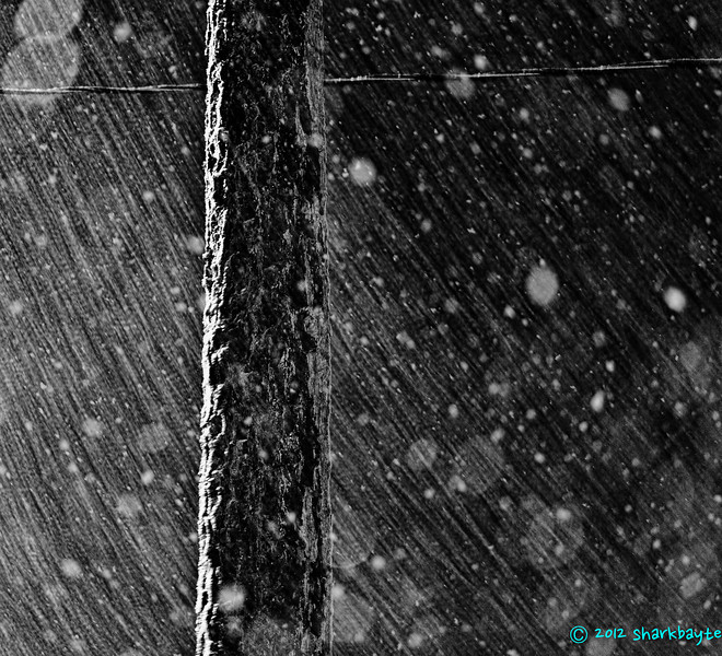 This is our first snow of the winter 2011-2012 season! Yay!! (19 Feb 2012)