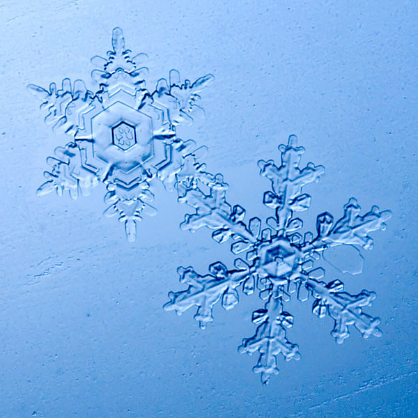This photo was highlighted on the Anchorage, Alaska KTUU channel 2 news weather segment today (1/3/07) - a day where we broke a single day snowfall record for January.