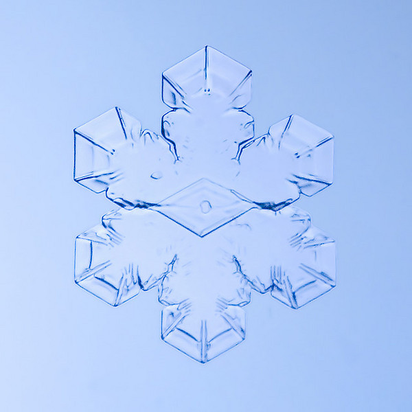 """Unframed Print: Snowflake 9411 - $25  Framed Print: Snowflake 9411 - $50  Blank Greeting Card: Snowflake 9411 - $3  Please click here to order: <a href=""""mailto:ajstudio@alaska.com?subject=ATTENTION: SNOWFLAKE ORDER"""">ajstudio@alaska.com</a>"""