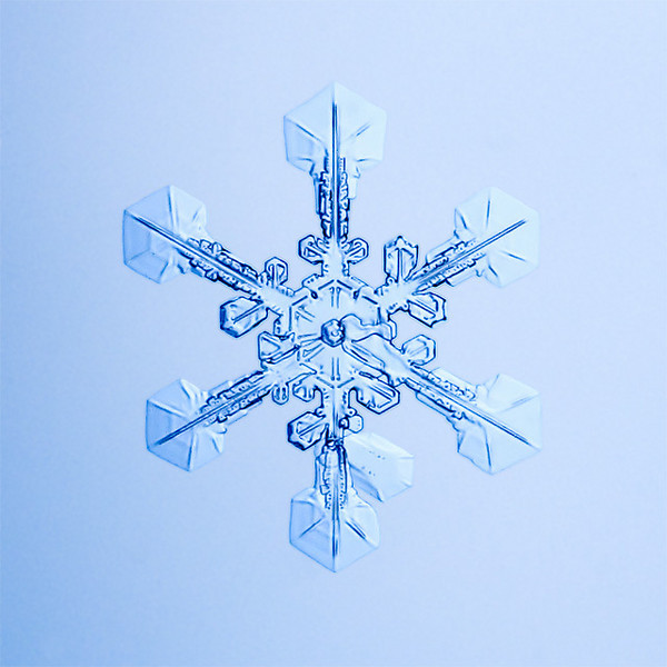 """Unframed Print: Snowflake 9457 - $25  Framed Print: Snowflake 9457 - $50  Blank Greeting Card: Snowflake 9457 - $3  Please click here to order: <a href=""""mailto:ajstudio@alaska.com?subject=ATTENTION: SNOWFLAKE ORDER"""">ajstudio@alaska.com</a>"""