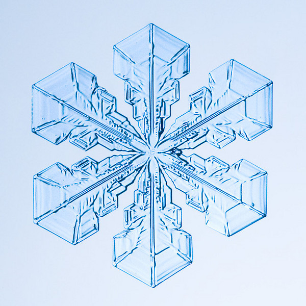 """Unframed Print: Snowflake 9408 - $25  Framed Print: Snowflake 9408 - $50  Blank Greeting Card: Snowflake 9408 - $3  Please click here to order: <a href=""""mailto:ajstudio@alaska.com?subject=ATTENTION: SNOWFLAKE ORDER"""">ajstudio@alaska.com</a>"""