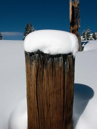 Snowshoeing - Vail Pass
