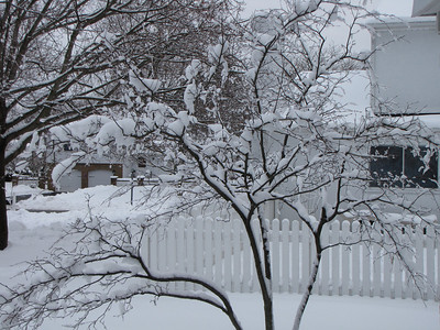 Snowstorm-2010-02-06