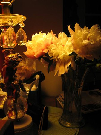 Well. Kitchen table at night.  Lamp so tacky, you have to love it or retch (I do both). A lot of clutter going on, but the peonies manage to grab the attention.  First week of bloom, and they are going all out.  I picked this because of the way the petals hold the light.  Will have to try more of this with a calmer background.  Another angle here without the extreme yellowy tint here: http://dvs.smugmug.com/gallery/4934083_ibNQw/1/310318373_qMYJp#310318373_qMYJp-A-LB