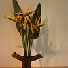 Sogetsu Ikebana flower arrangement by Margaret Starkey.