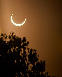 Solar Eclipse from Phoenix, AZ