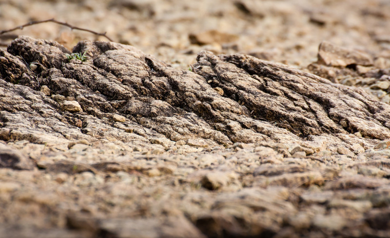 Serpentine rock at Soldiers Delight.  Canon XSi, Tamron 70-300 vc