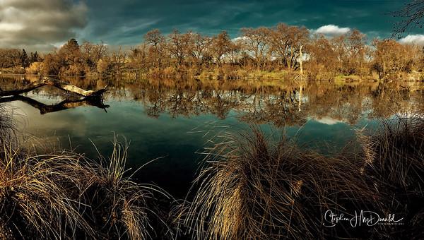 Putah Creek NR_PerfectlyClear copy