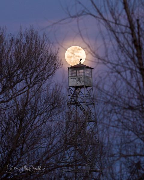 Blue_moon_013018-59