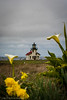 Pt_Cabrillo_Lighthouse031417-160