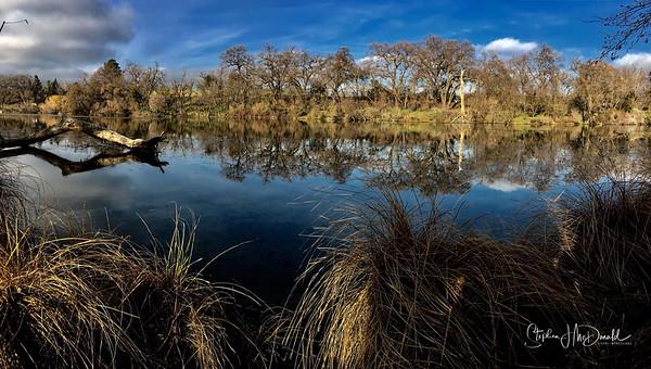 Putah Creek NR2