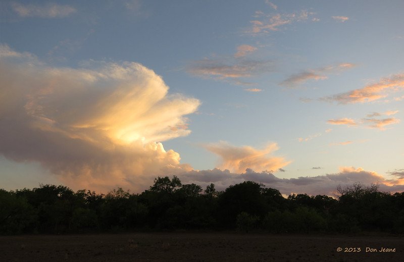 After the storm, So Llano SP, 04/29/2013. We seem to bring a little rain each visit.