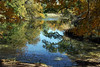 Buck Lake, 11/10/2011.