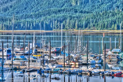 Thorne Bay Alaska Boats